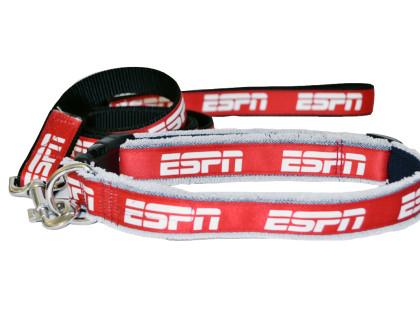 ESPN Denim Dog Leash and Collar