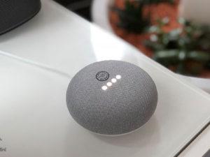 Custom Printed Google Home Mini